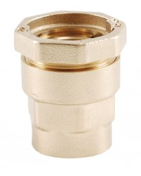 Straight brass coupling - PE / Female