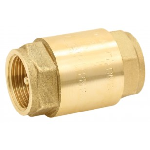 "Brass multi positions check valves - ""Industrial series"" - EUROPA ® - Stainless steel lift type check valve"