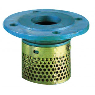 Flanged strainer ISO NP 10